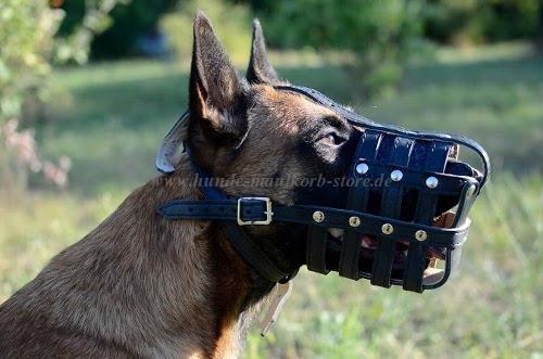 Geflochtenes Hundehalsband aus Leder kaufen
