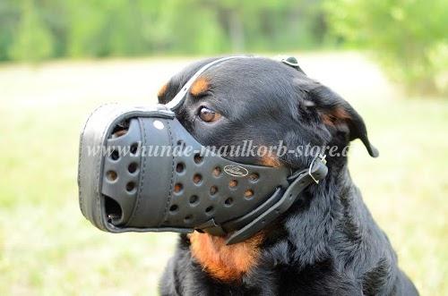 Geschlossener Ledermaulkorb für Attacketraining und Polizeihunde kaufen