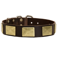 Leather Dog Collars With Vintage Massive Plates, Bestseller!