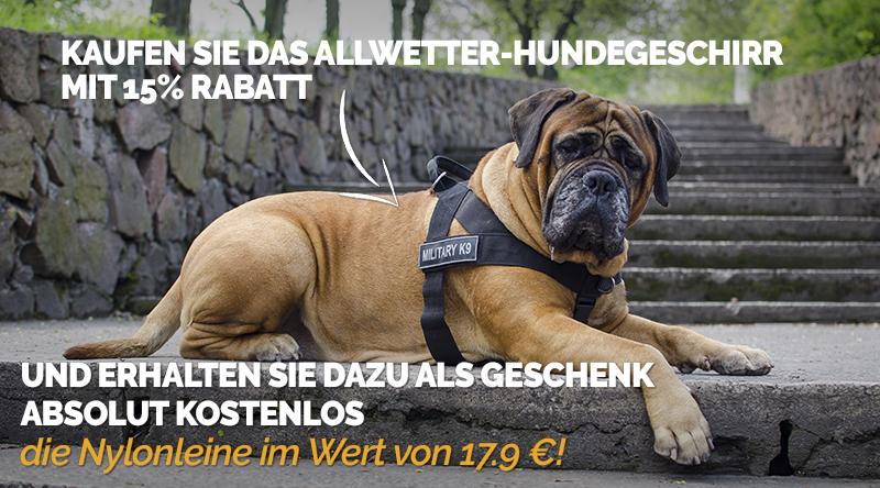 Hundegeschirr Angebot