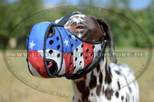Exklusiver Ledermaulkorb Amerikanische Flagge