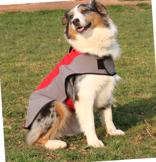 Australian Shepherd Hundemantel mit Fleece fuer Winter