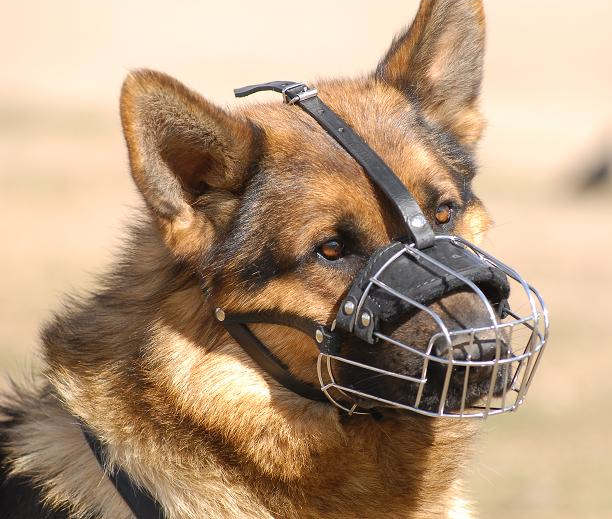 /images/large/Maulkorb-draht-Basket-Wire-Dog-Muzzle-German-shepherd_LRG.jpg