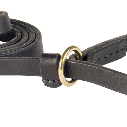 Fast Walking Combo Leash | Choke Collar