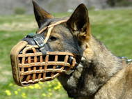 Leather basket dog muzzle, perfect for German Shepherd, Malinois