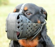 "Rottweiler Hundemaulkorb für Training ""Dondi plus"""