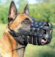 Leather Dog Muzzle for Malinois, Muzzle with Best Ventilation