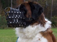 Dog Muzzle for St.Bernard