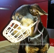 Dog Muzzle for Mix Breeds, Made of Plastic