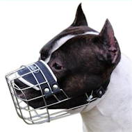 Wire Dog Muzzle for Amstaff, Amstaff Cage Muzzle