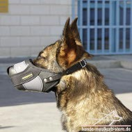 Muzzle for Malinois of Leather with Nylon