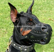 Doberman Muzzle of Leather with Optimum Ventilation